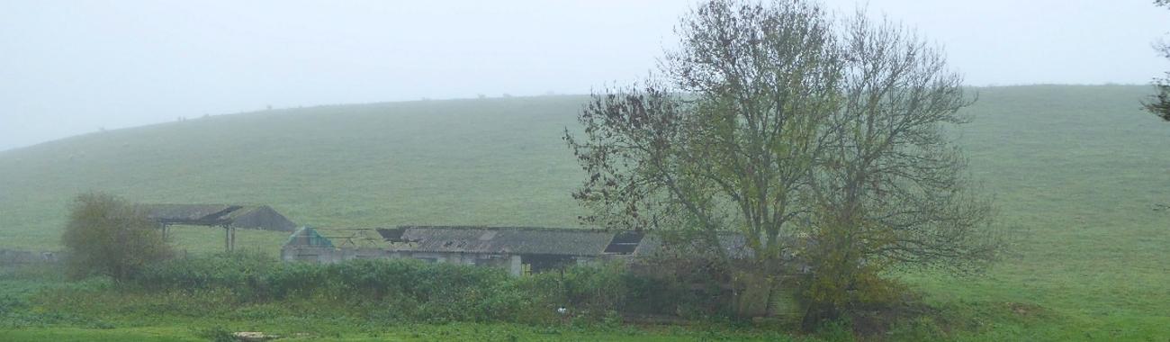 Banner fog.full