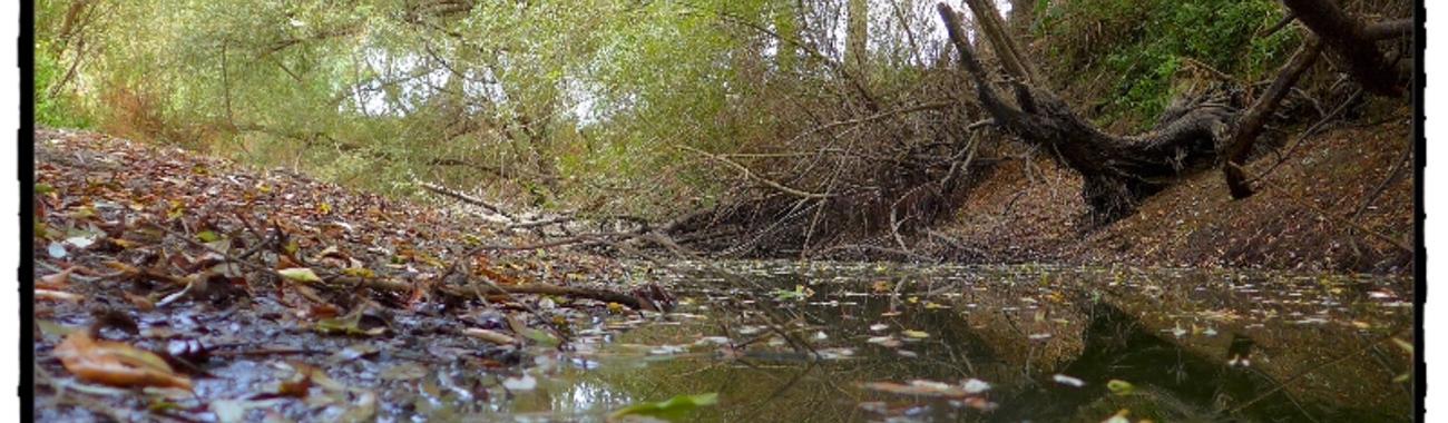 River.full